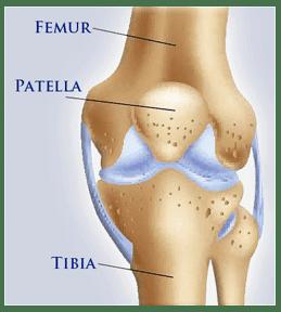 HPT-knee